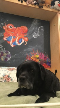 mural progress ft. dog, spring